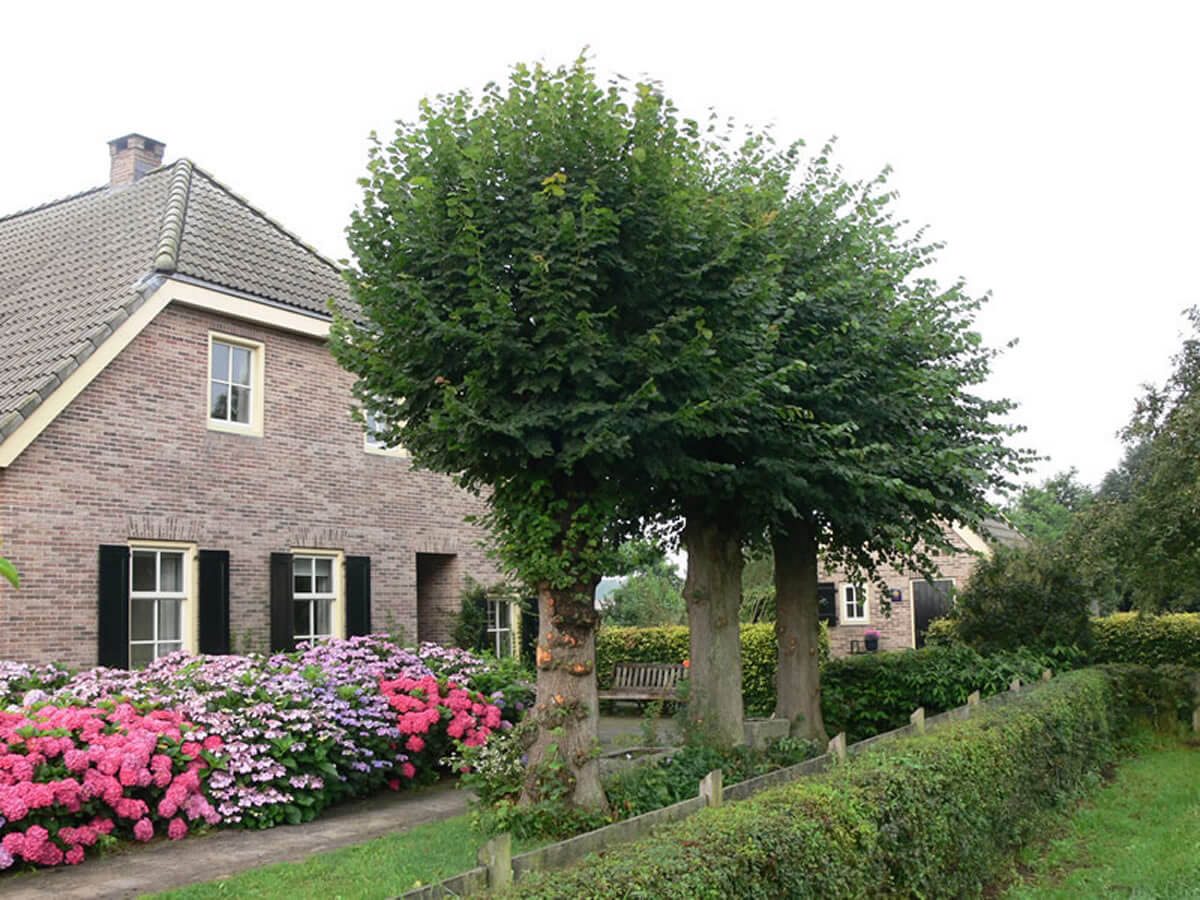 bed-en-breakfast-drenthe