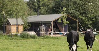 Accommodatie Dwingeloo – De Lange Weide
