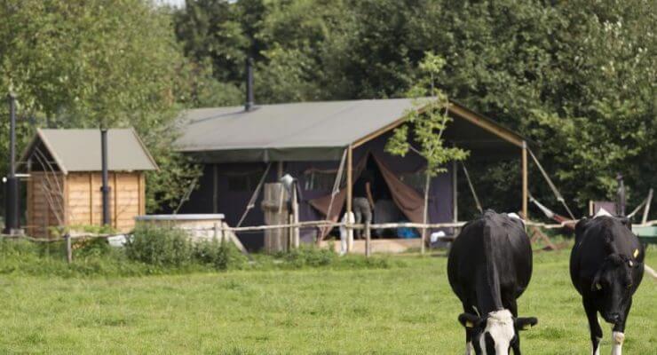 boerenbed-tent